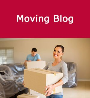 Movers Blog