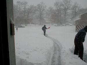 blizzard-2k3-17754-m