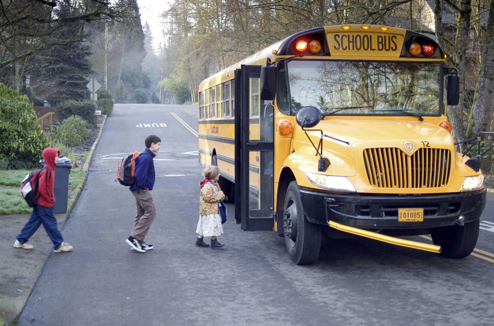 Novi Mi school-bus