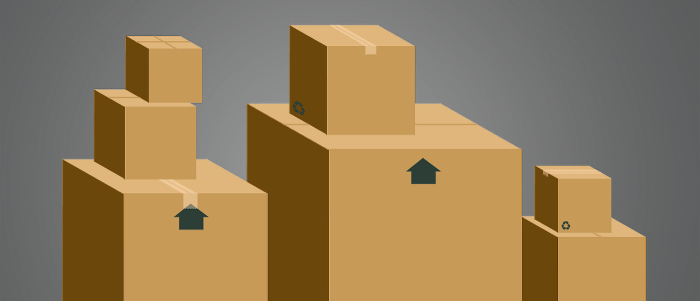 Professional Long Distance Movers From Livonia